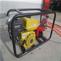 灭虫汽油喷雾器 自走式葡萄园专用打药机