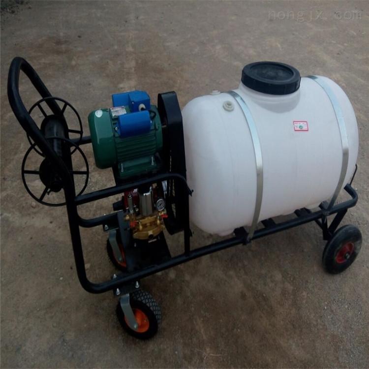 菜园打药机 大马力汽油喷雾器