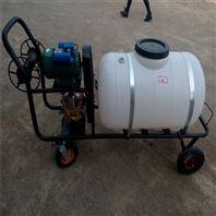 果园高压打药车 防疫消毒喷雾器设备