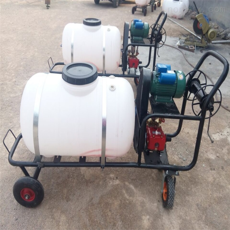 四轮车打药机 小型手推式喷雾机