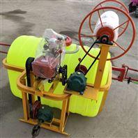 园林绿化自动打药机 手推拉管喷雾喷雾器