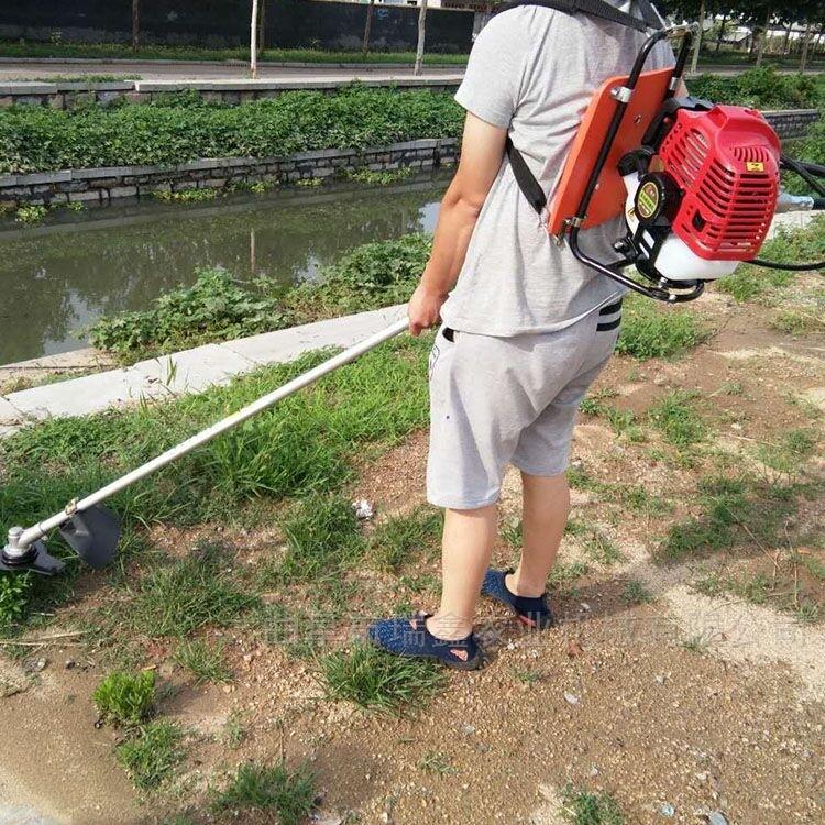 便携式除草机 小型汽油割草机