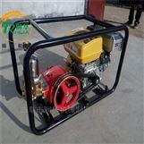 高射程绿地打药喷雾器 葡萄园防虫喷药机