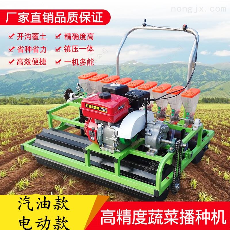 精量蔬菜播种机菠菜萝卜香菜免间苗省人工