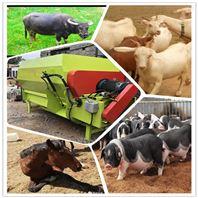 奶牛养殖全日粮搅拌机 牧草精料的拌料机