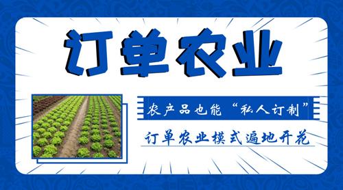 """农产品也能""""私人订制"""",订单农业模式遍地开花"""